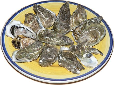 440px-Oysters_p1040741.jpg
