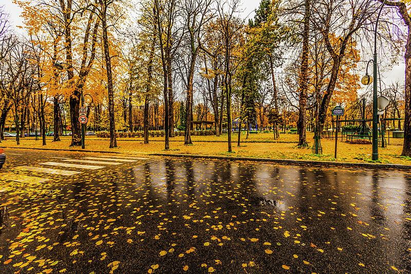 — Photo by    Valerii Tkachenko