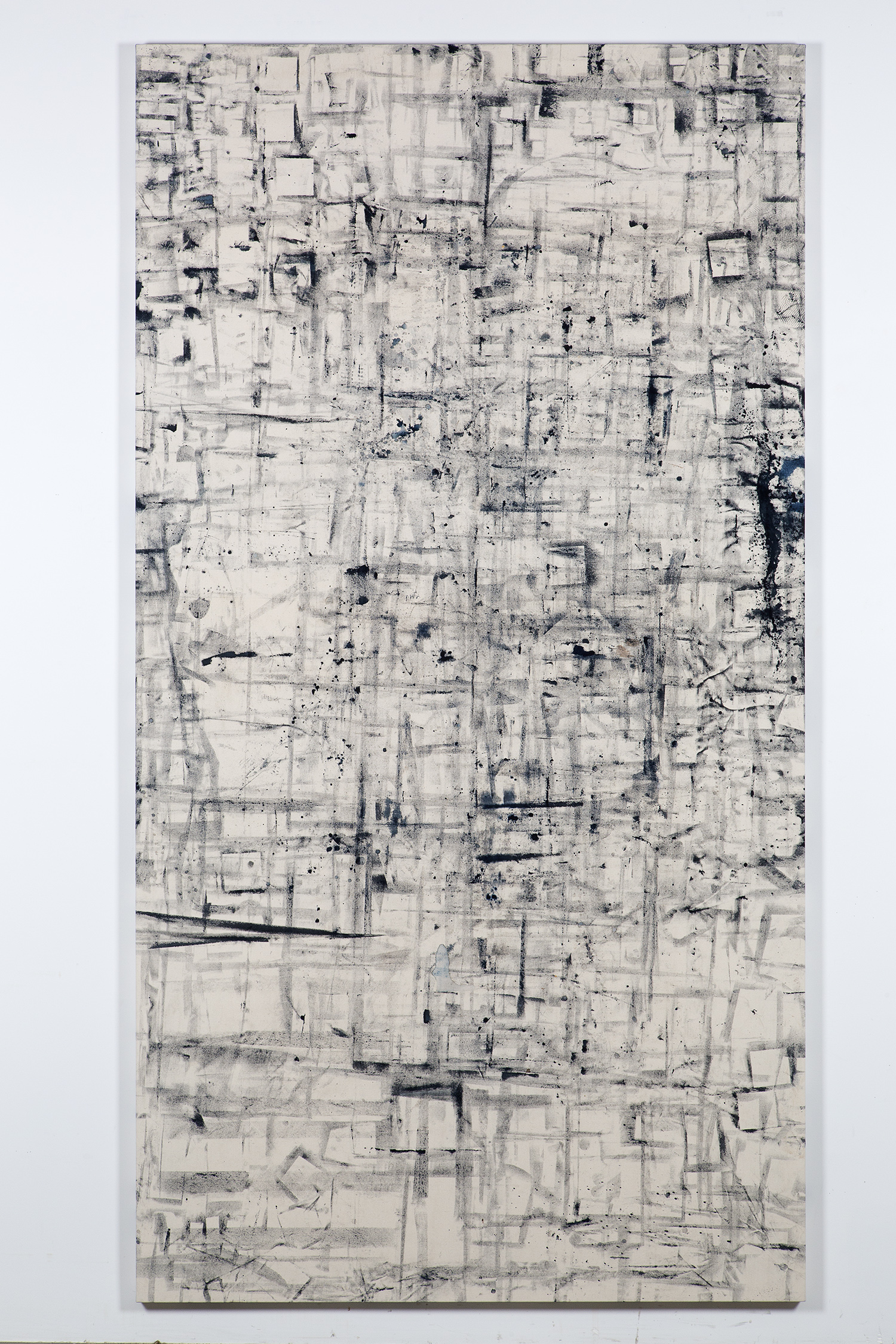 Marginalis (Los Angeles, California, October 21, 2013–January 31, 2014)    2014   Cyanotype chemistry on canvas  104 x 55 inches   Cyanotype Paintings, 2013–2015