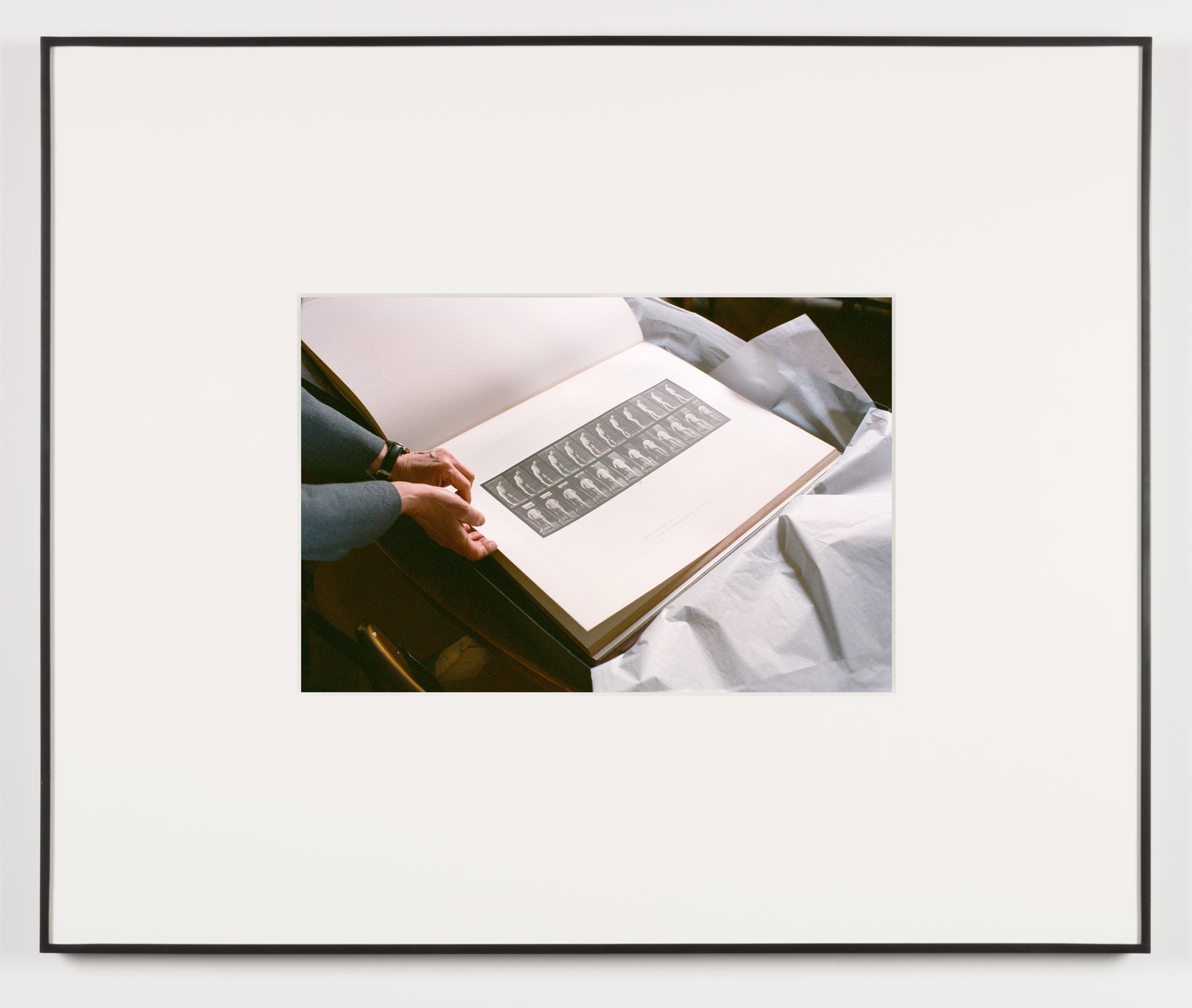 Der Herrscher (Paris, France, March 12, 2013)    2014   Chromogenic print  13 1/2 x 20 inches   Selected Bodies of Work, 2014