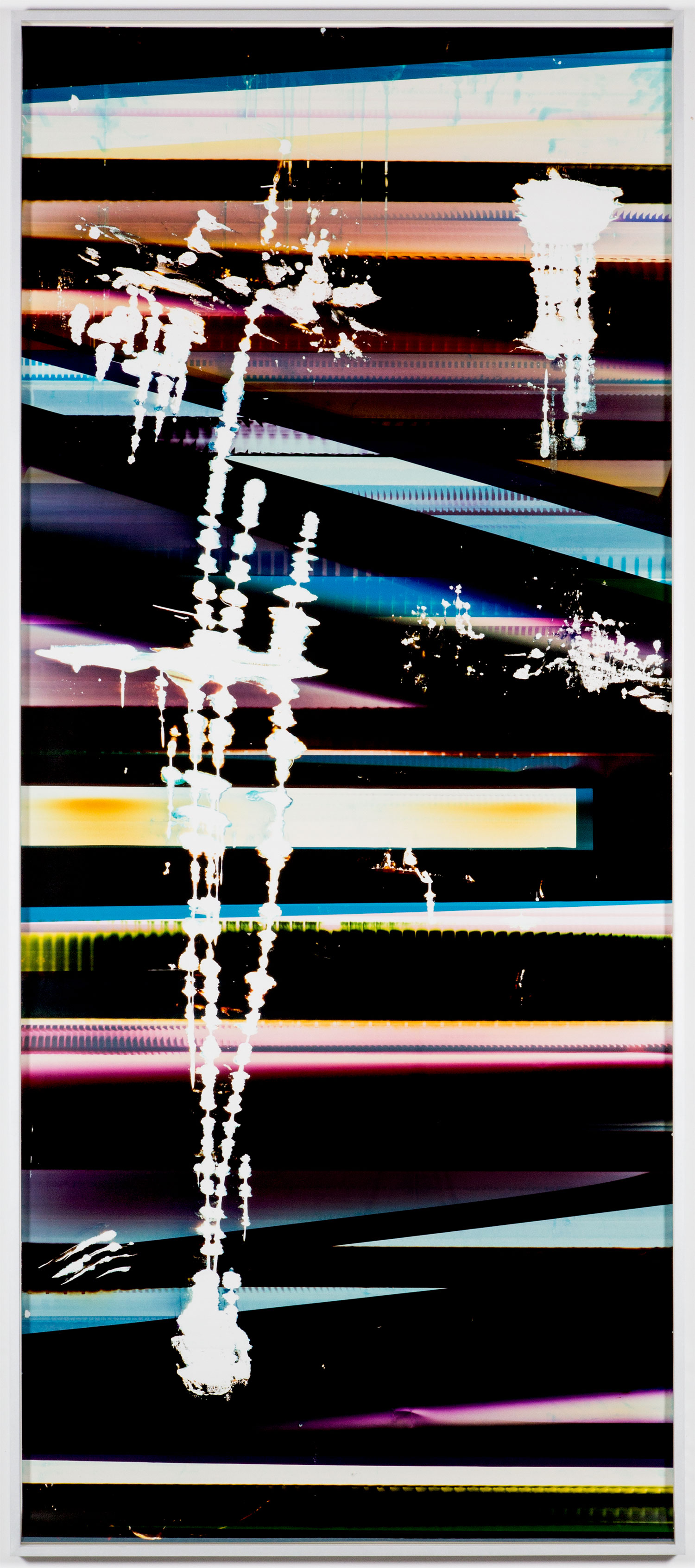 Cross-Contaminated RA4 Contact Print [Black Curl (9:6/CYM/Six Magnet: Los Angeles, California, January 27, 2014, Fuji Color Crystal Archive Super Type C, Em. No. 101-006, Kodak Ektacolor RA Bleach-Fix and Replenisher, Cat. No. 847 1484, 06214), Kreonite KM IV 5225 RA4 Color Processor, Ser. No. 00092174]   2016  Color photographic paper  119 3/4 x51 1/2 inches   RA4 Contact Print Curls, 2014–    Automat, 2016