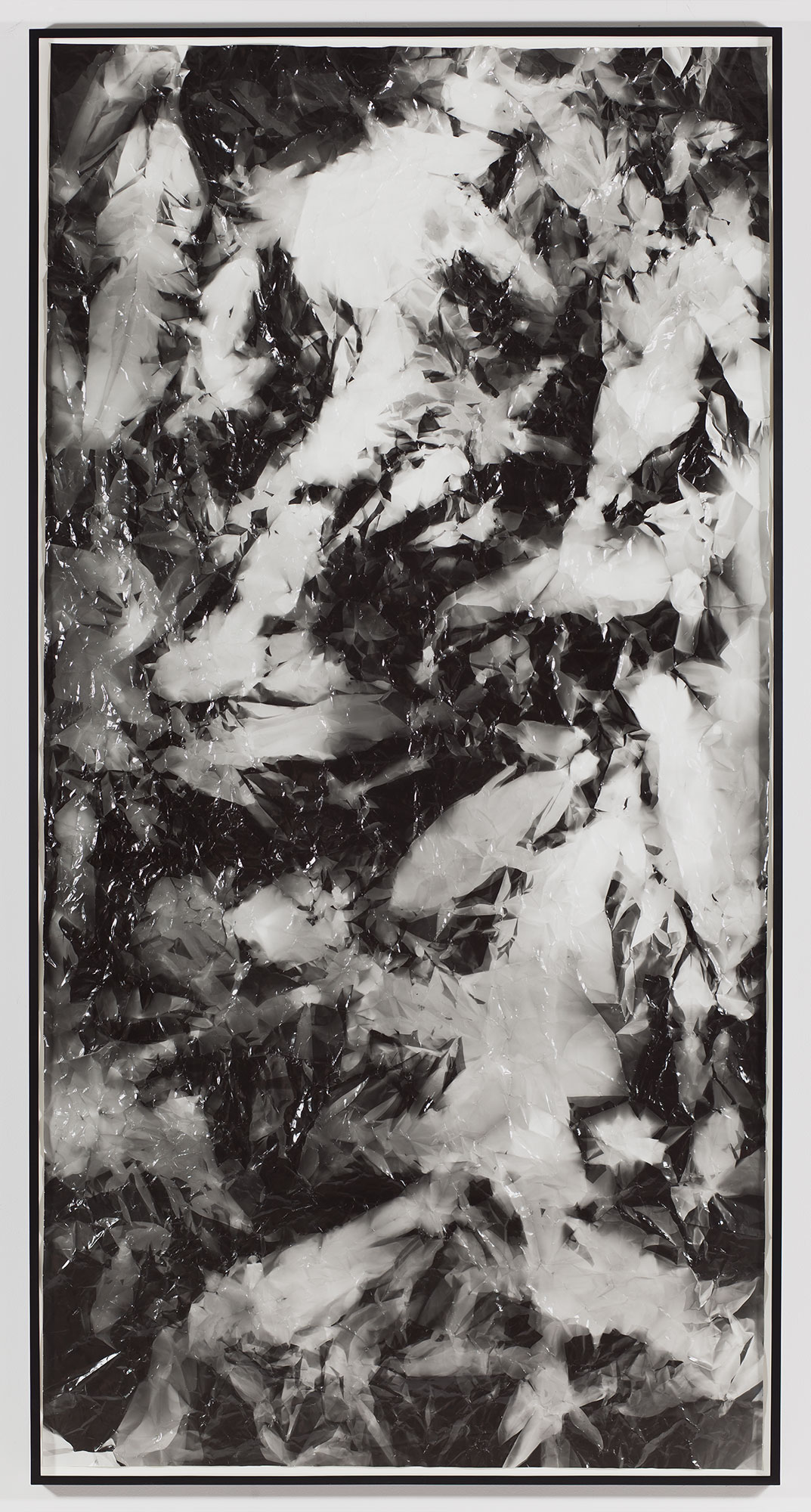 Picture Made by My Hand with the Assistance of Light    2011   Black and white fiber based photographic paper  111 x 55 inches