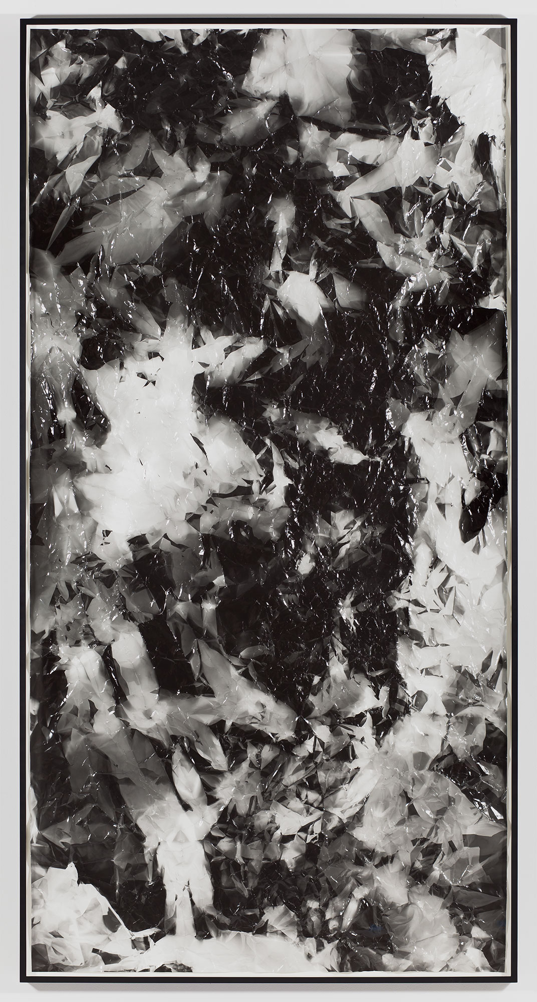 Picture Made by My Hand with the Assistance of Light    2011   Black and white fiber based photographic paper  55 inches