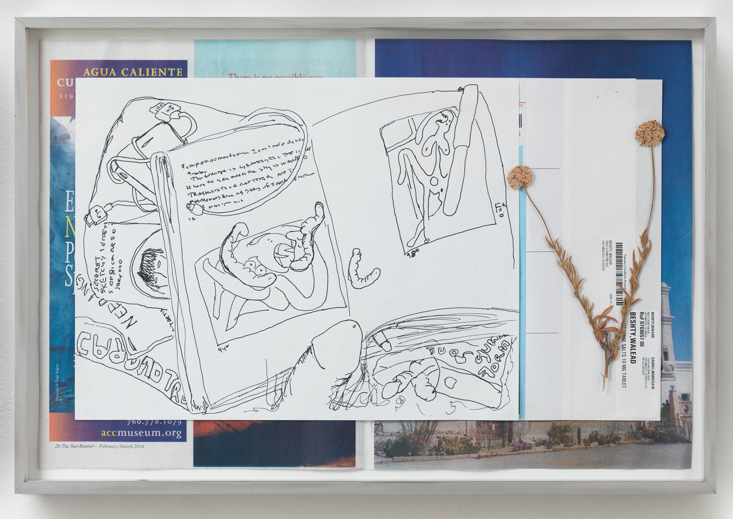 Picasso and Truth: From Cubism to Guernica I   2014  Ink on paper, receipt, dried flower, newspaper  11 3/4 x 17 3/8 inches   Drawings, 2014–    Gastarbeiten, 2014
