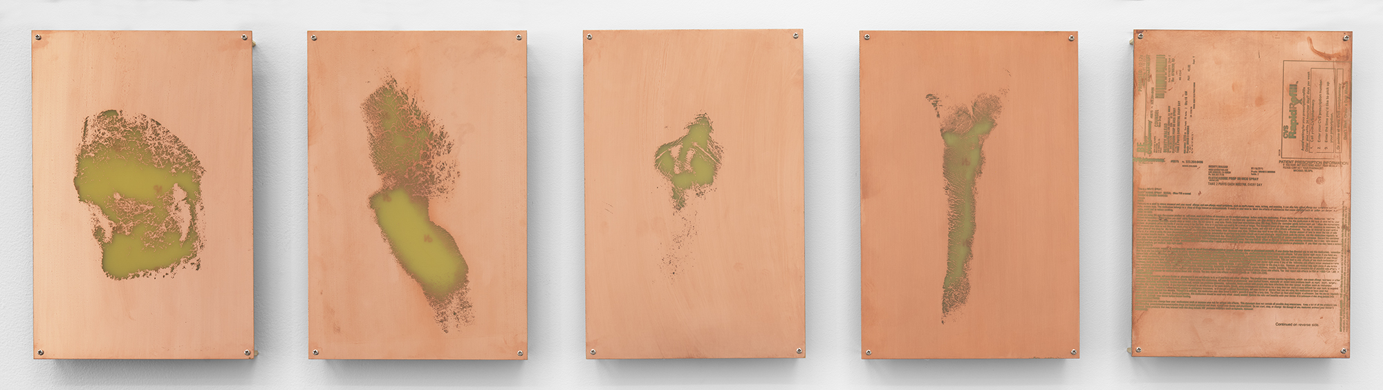 Body Print (Popliteal Fossa, Left Antebrachium, Right Antebrachium, Right Carpal and Attending Soft Tissues, Fluticasone Prop 50 mcg Spray)    2017   Etched copper-clad FR-4 glass-reinforced epoxy laminate board  12 x 8 inches each, 5 parts   Body Prints, 2017–