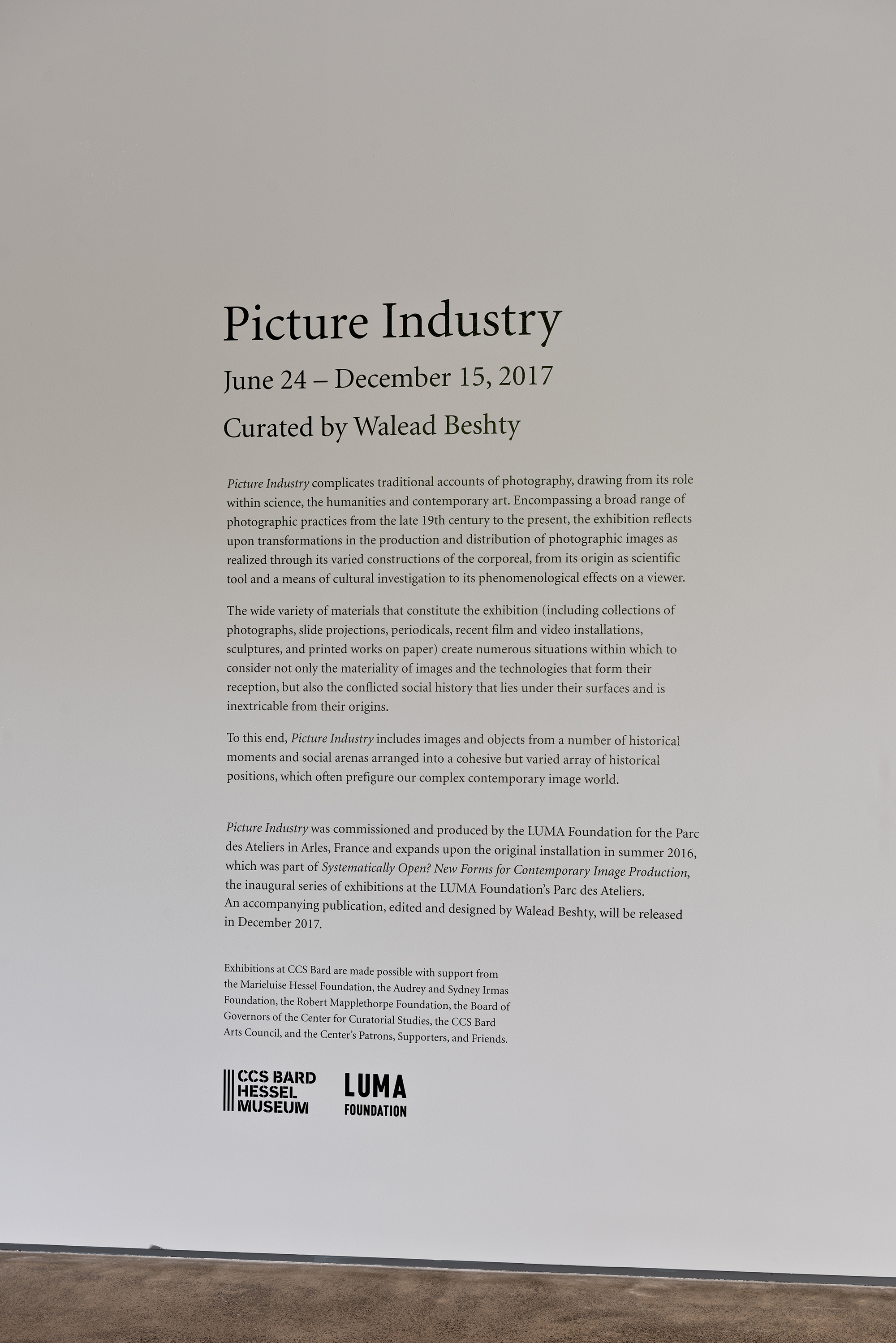 Picture Industry , Hessel Museum, Center for Curatorial Studies, Bard College, Annandale-on-Hudson, NY, 2017.