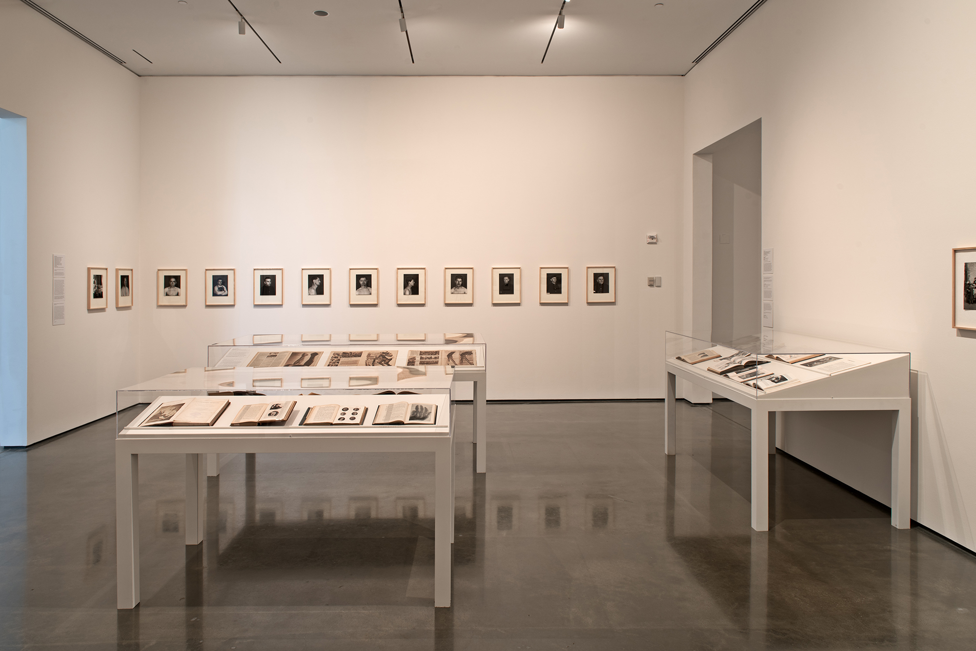 Picture Industry , Hessel Museum, Center for Curatorial Studies, Bard College, Annandale-on-Hudson, NY, 2017.     Duchenne de Boulogne, David Walsh, Alphonse Bertillon, Francis Galton, Charles Darwin,  John Heartfield, August Sander, Fritz Kahn, and Ernst Friedrich