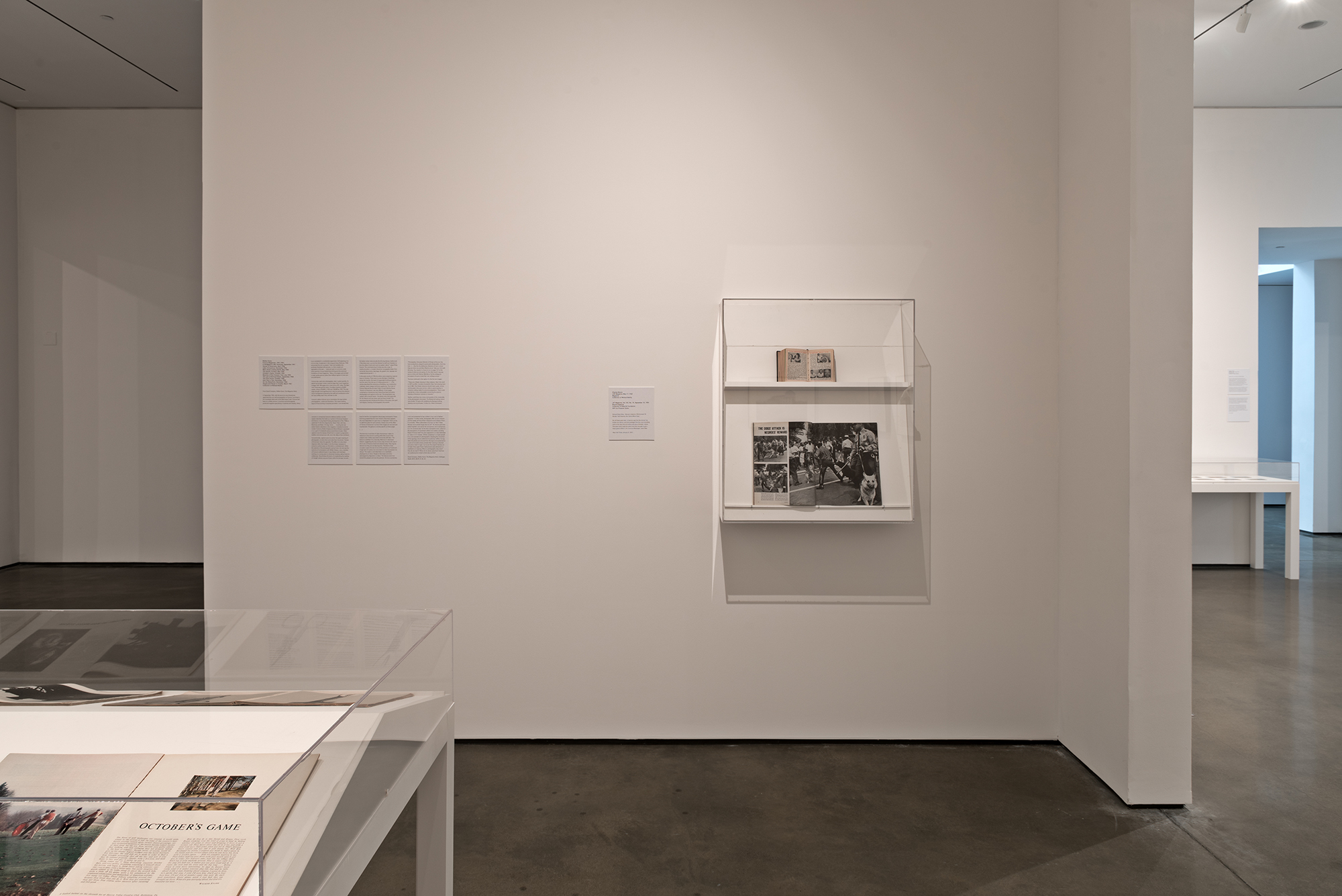 Picture Industry , Hessel Museum, Center for Curatorial Studies, Bard College, Annandale-on-Hudson, NY, 2017.     Walker Evans, JET Magazine, and Charles Moore