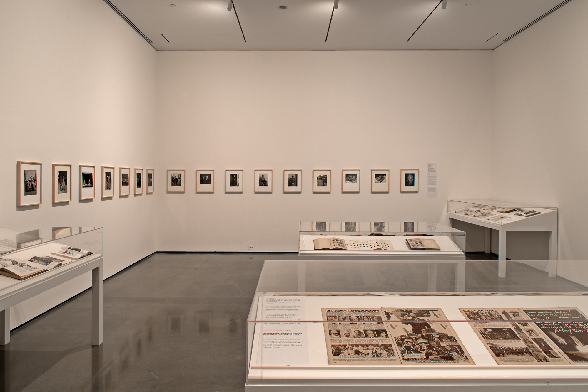 Picture Industry , Hessel Museum, Center for Curatorial Studies, Bard College, Annandale-on-Hudson, NY, 2017.     Fritz Kahn, Ernst Friedrich, August Sander, Duchenne de Boulogne, David Walsh, Alphonse Bertillon, Francis Galton, Charles Darwin, Lewis Hine, and John Heartfield