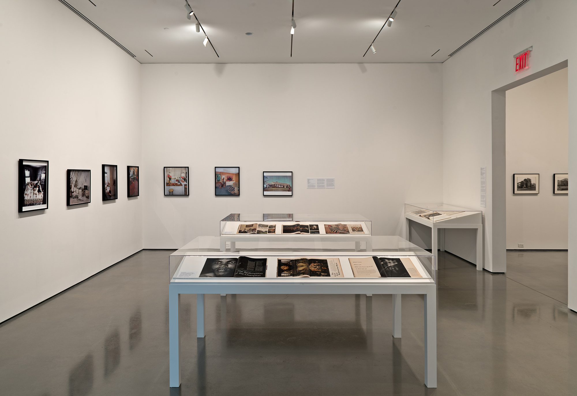Picture Industry , Hessel Museum, Center for Curatorial Studies, Bard College, Annandale-on-Hudson, NY, 2017.     Martha Rosler, Gordon Parks, and Dan Graham