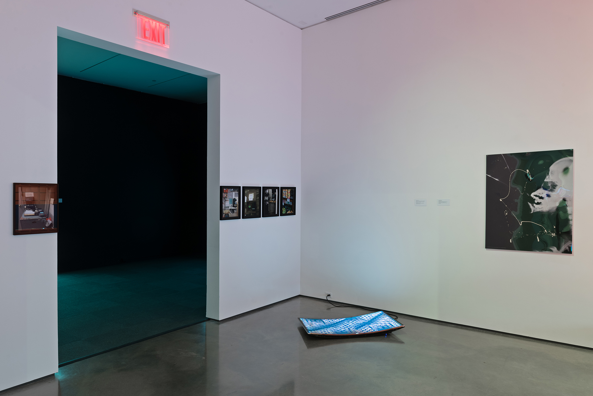 Picture Industry , Hessel Museum, Center for Curatorial Studies, Bard College, Annandale-on-Hudson, NY, 2017.     Cameron Rowland, Seth Price, and Isa Genzken