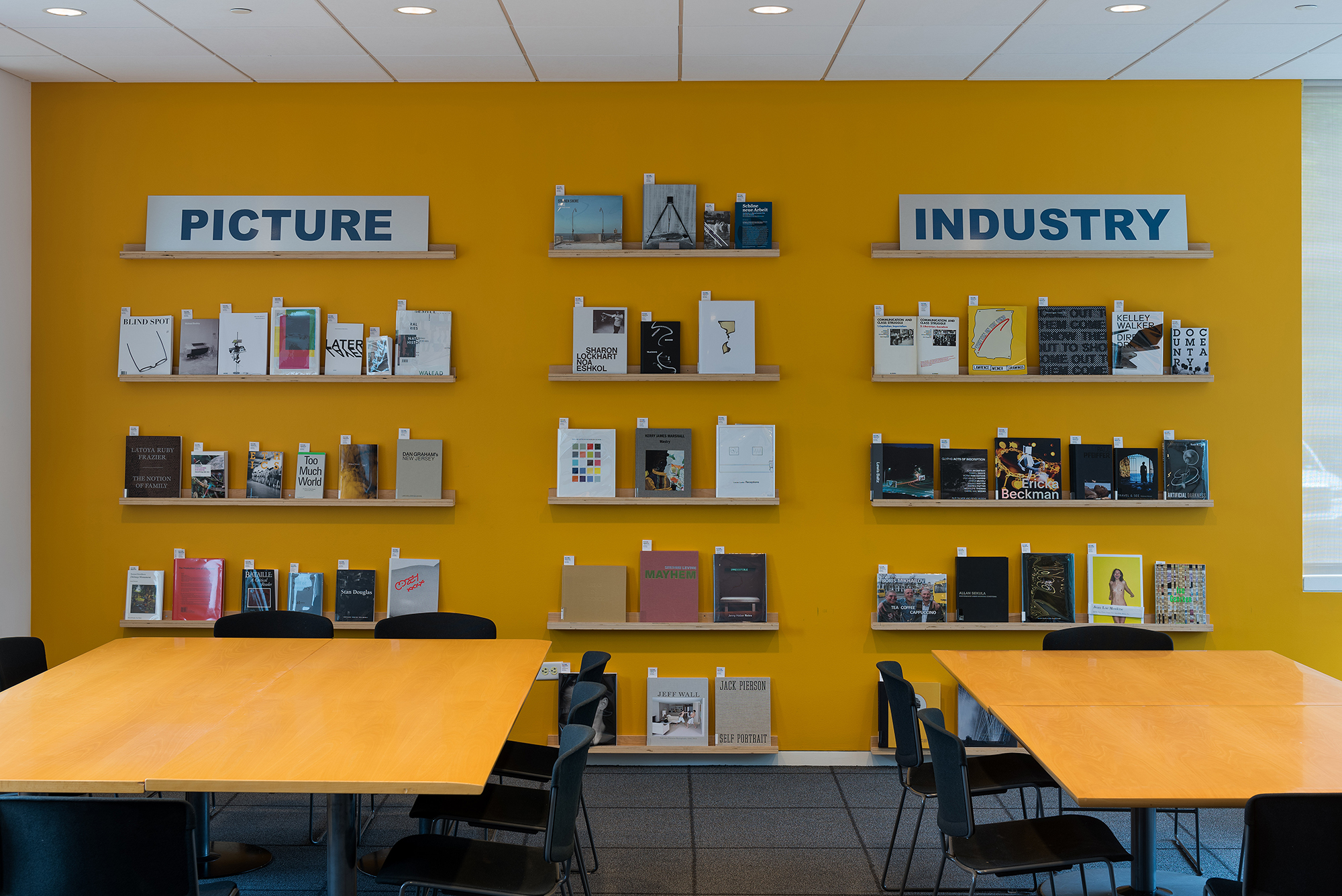 Picture Industry , Hessel Museum, Center for Curatorial Studies, Bard College, Annandale-on-Hudson, NY, 2017.     CCS Library Wall Display