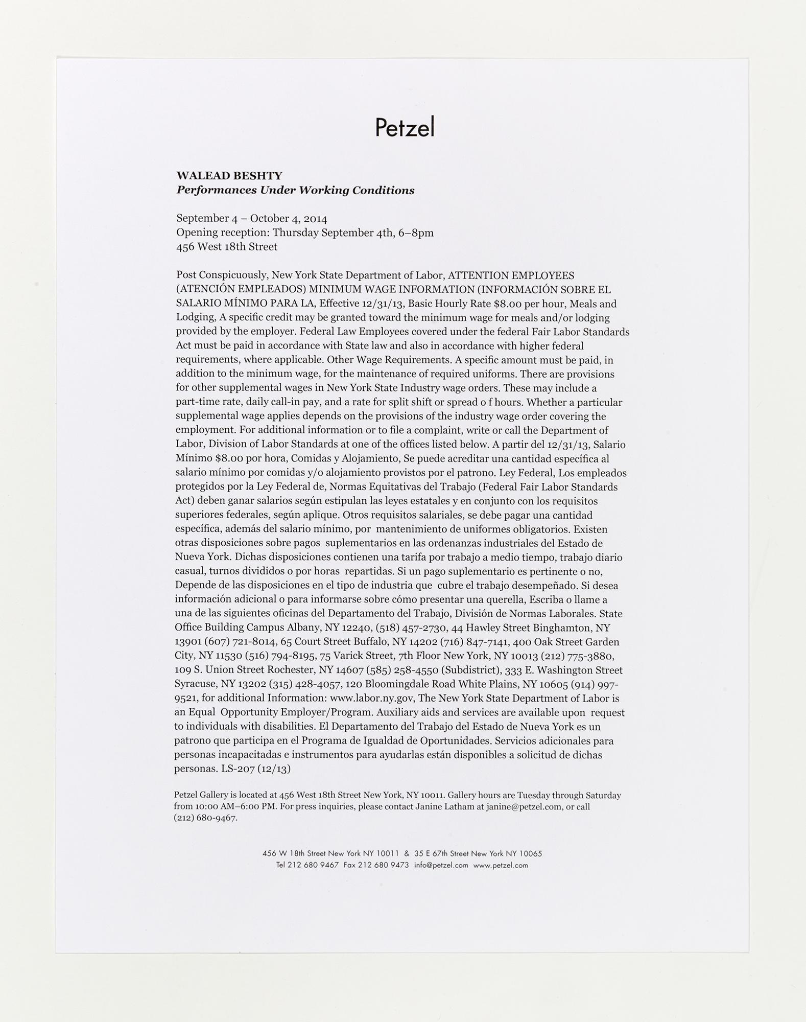 Performances Under Working Conditions press release   Petzel  New York  New York  2014