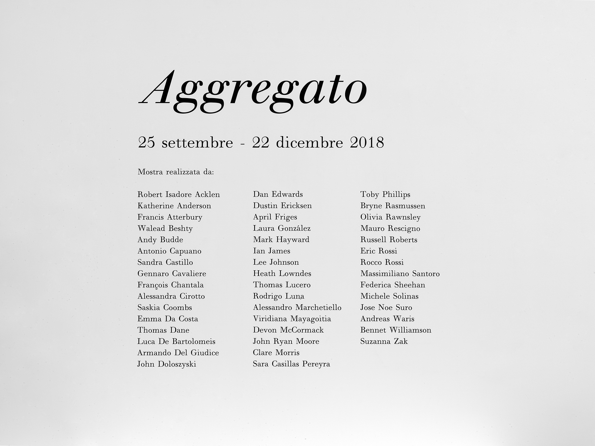 Aggregato   Thomas Dane Gallery  Naples  Italy  2018