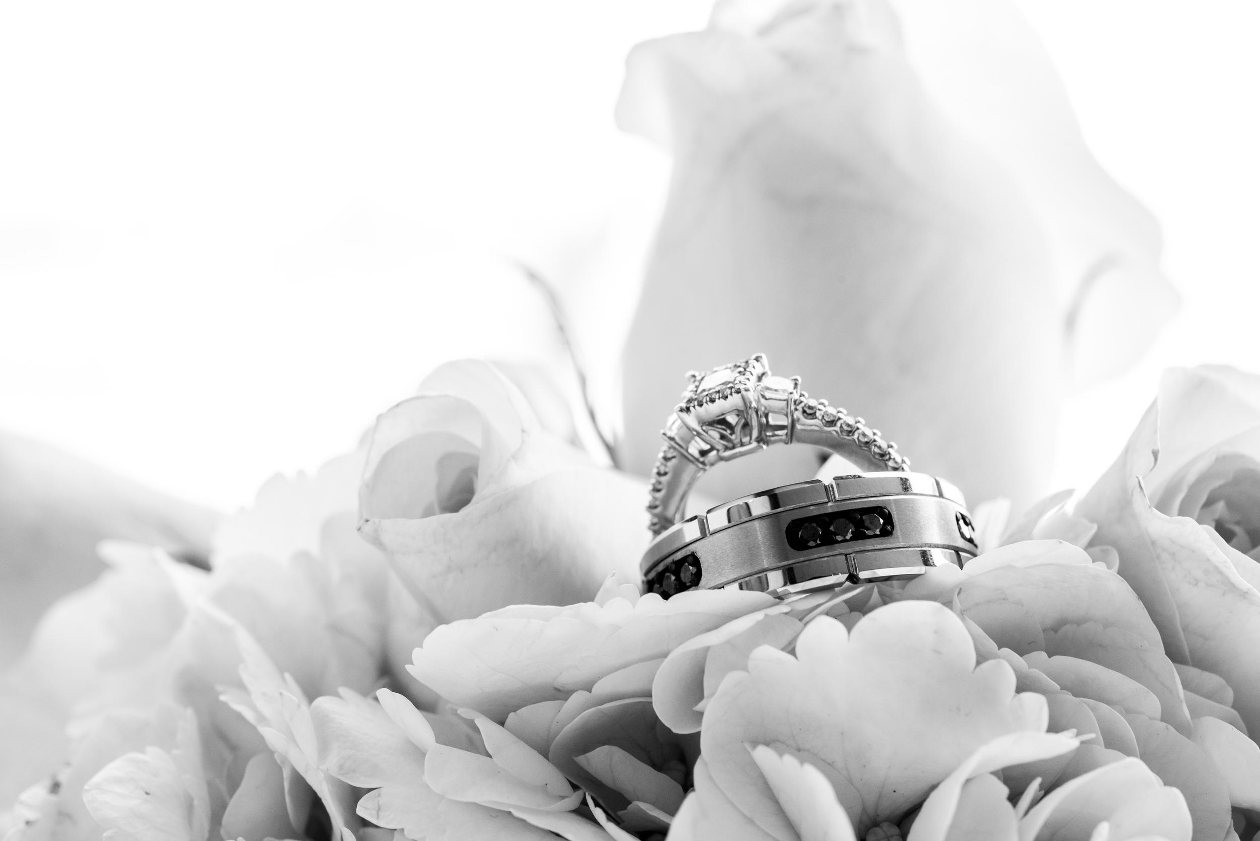 C&C-Wedding-230.jpg