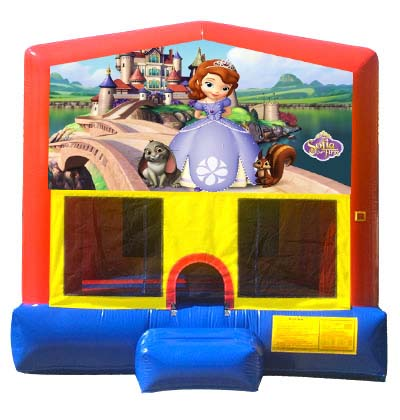 13x13 Sofia the First Module Jumper.jpg