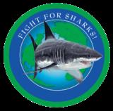 sharkstewards.png