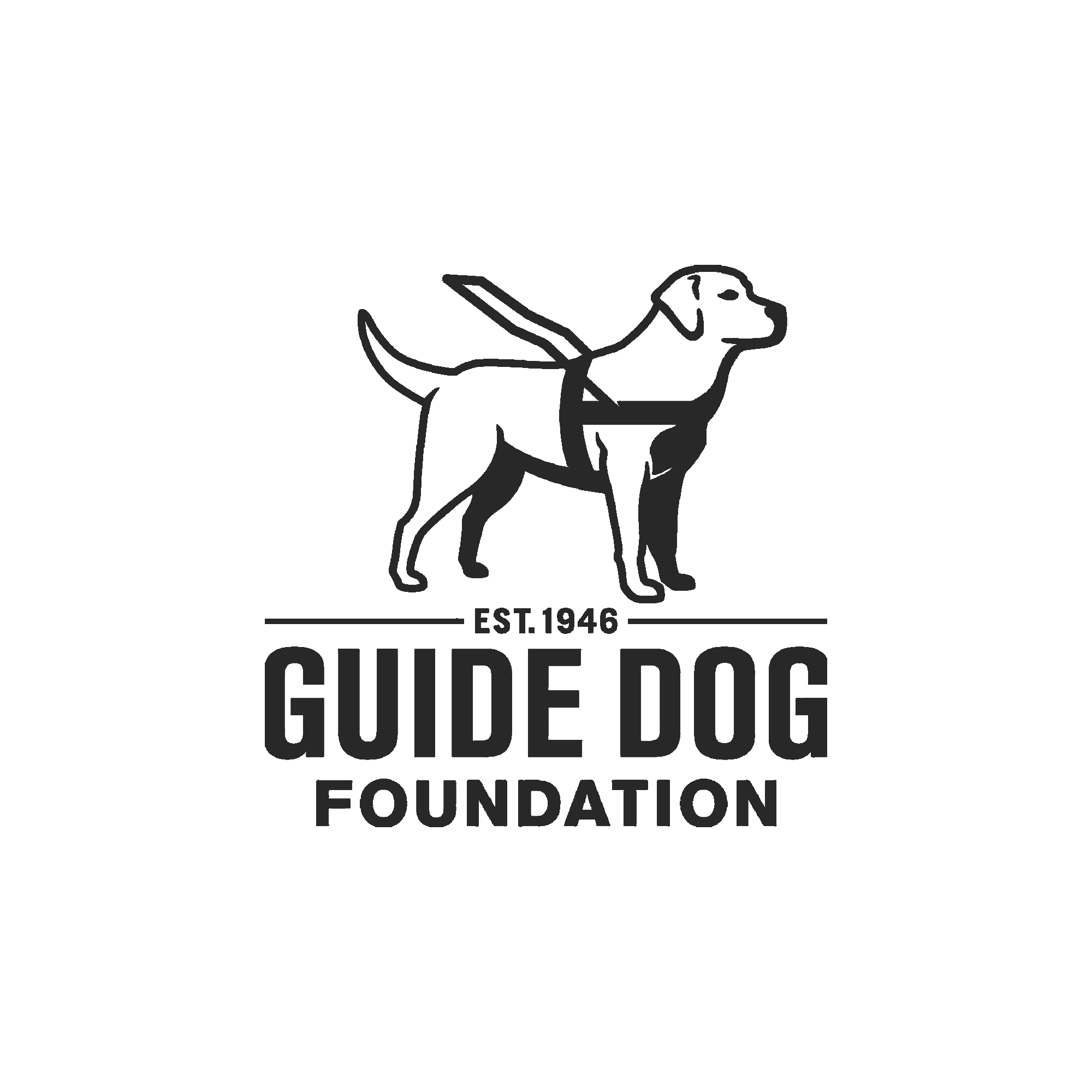 17_Guide Dog-GREY.png