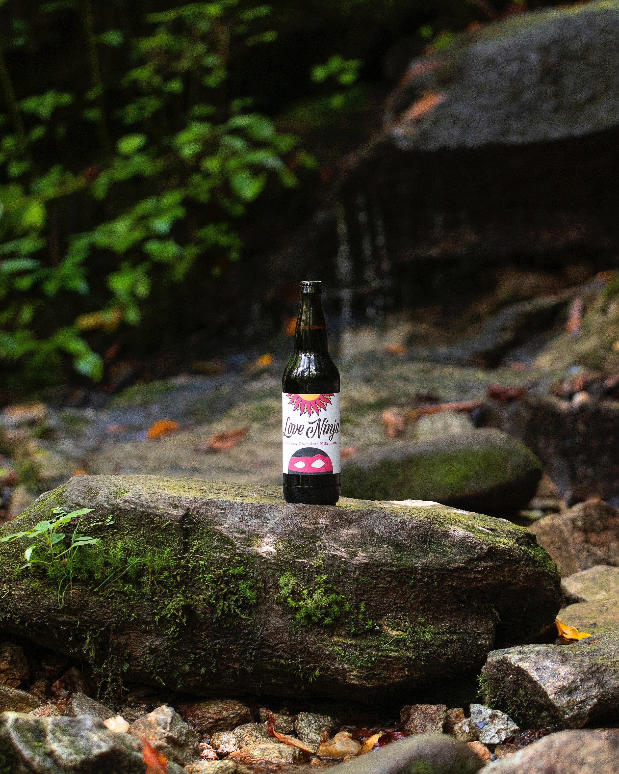 Love Ninja by Asheville Brewing - Jimmy Larkin