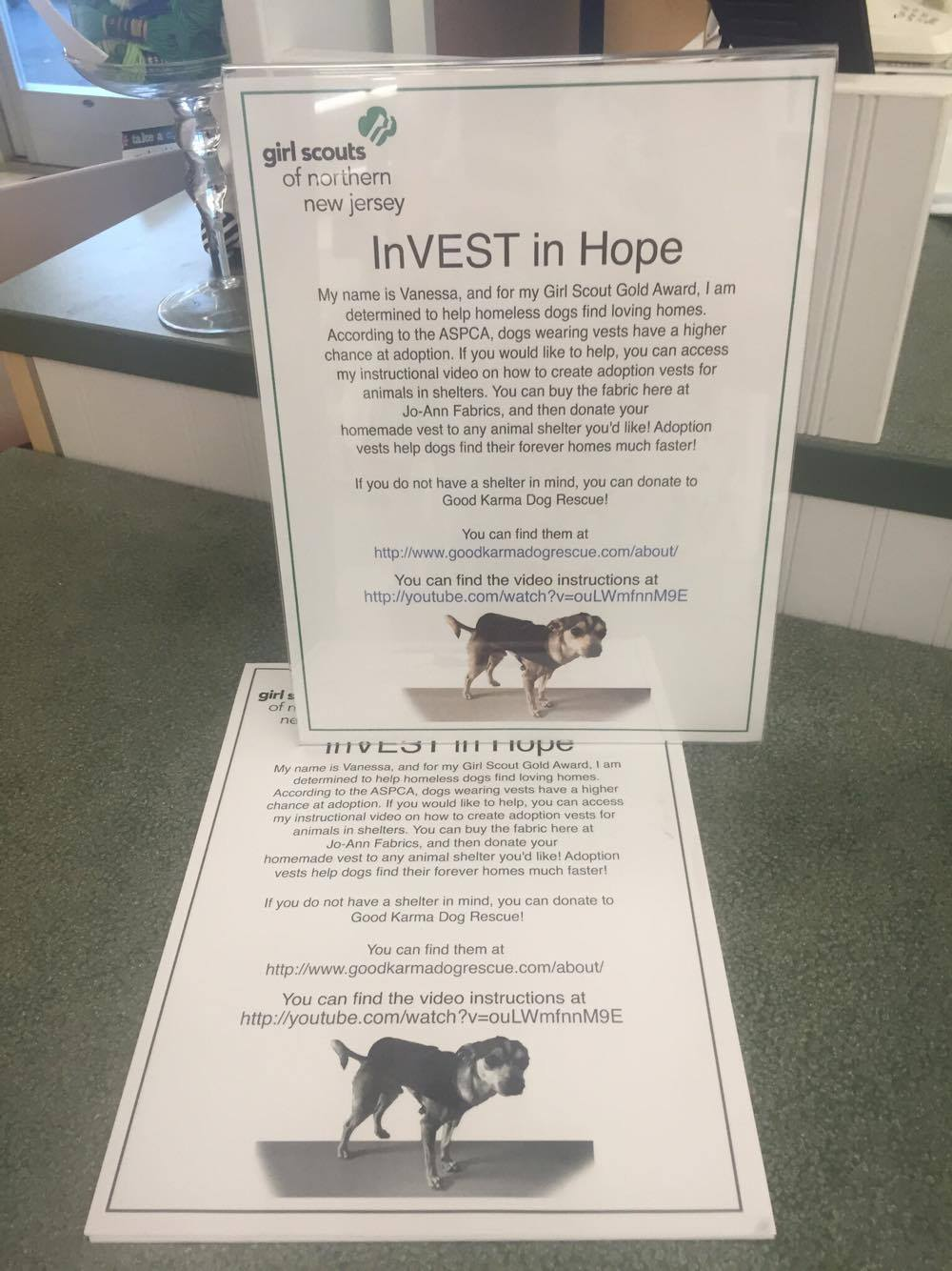 InVEST in Hope