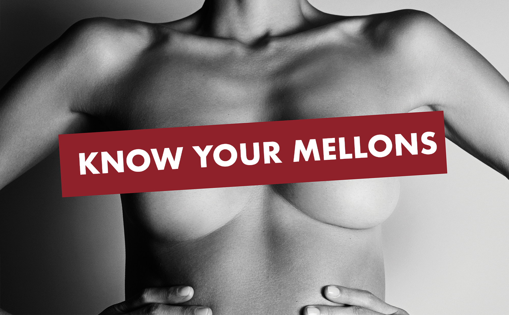 Know Your Mellons - Campaign Image.jpg