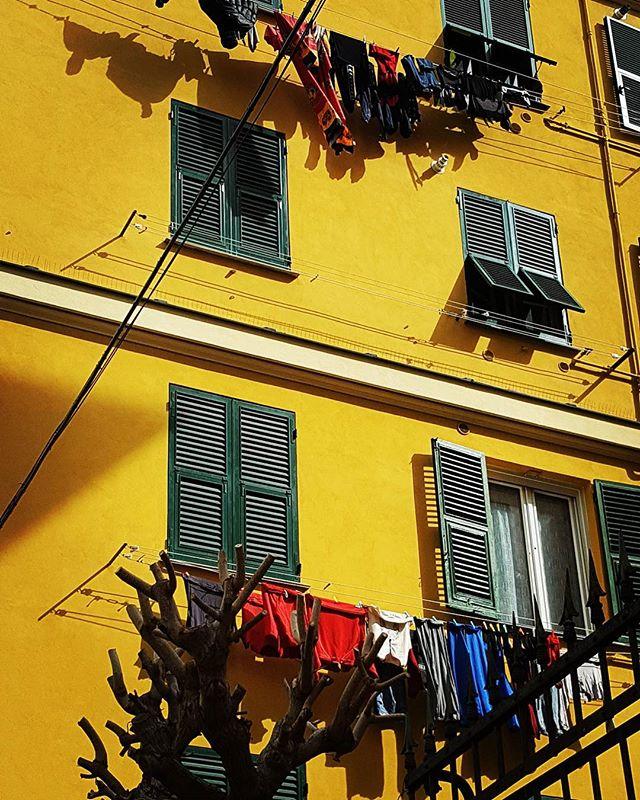 On dirait le Suuudddd 🌻🌞😊 #cinqueterre #italy #voyage #sud #soleil #jaune
