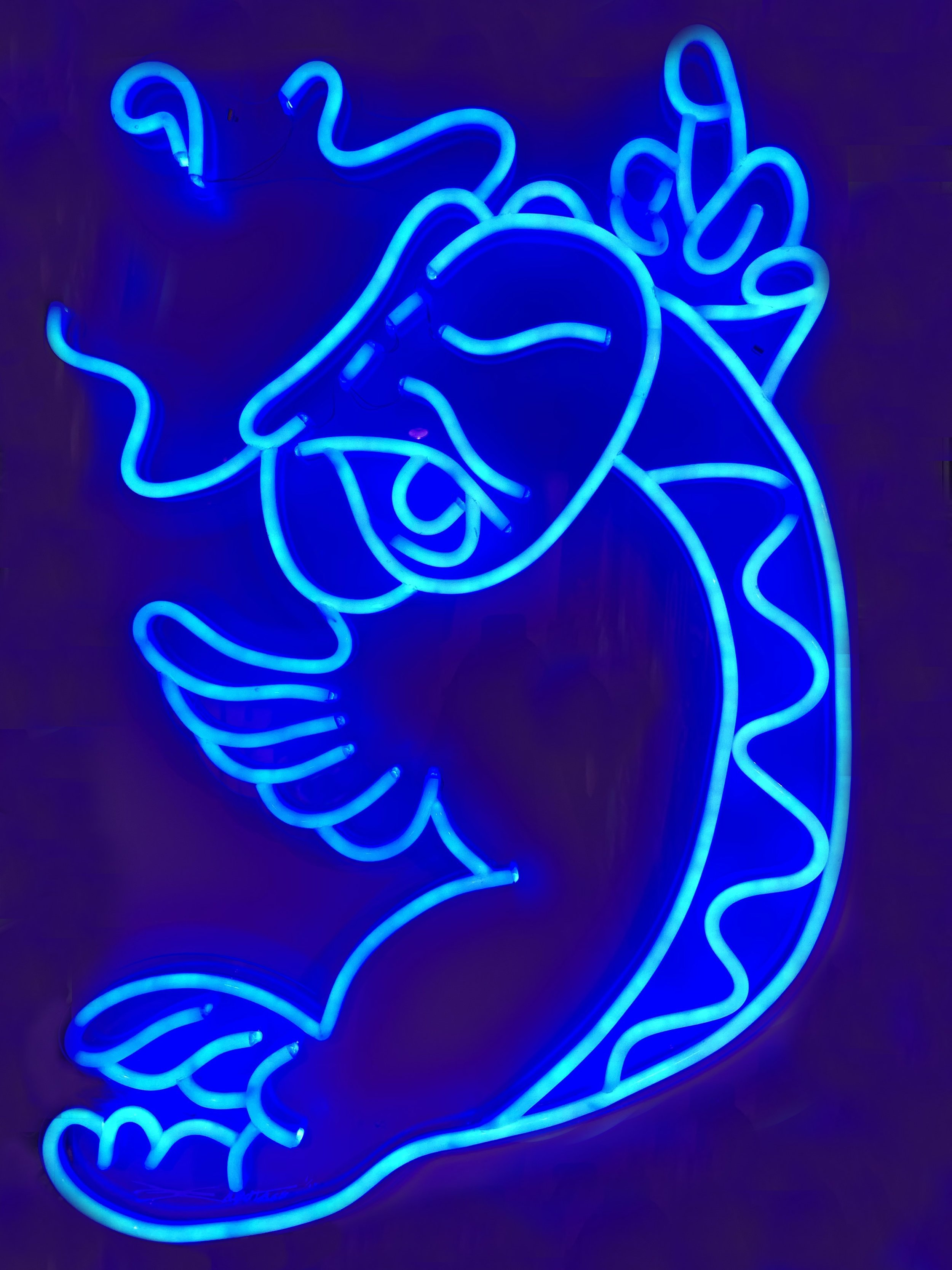 """Shiny Koi - Blue"" 10 Limited Edition LED Light 90 x 66 cm 2018"