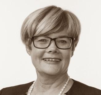 Kristin Ørmen Johnsen,  Stortingsrepresentant Høyre