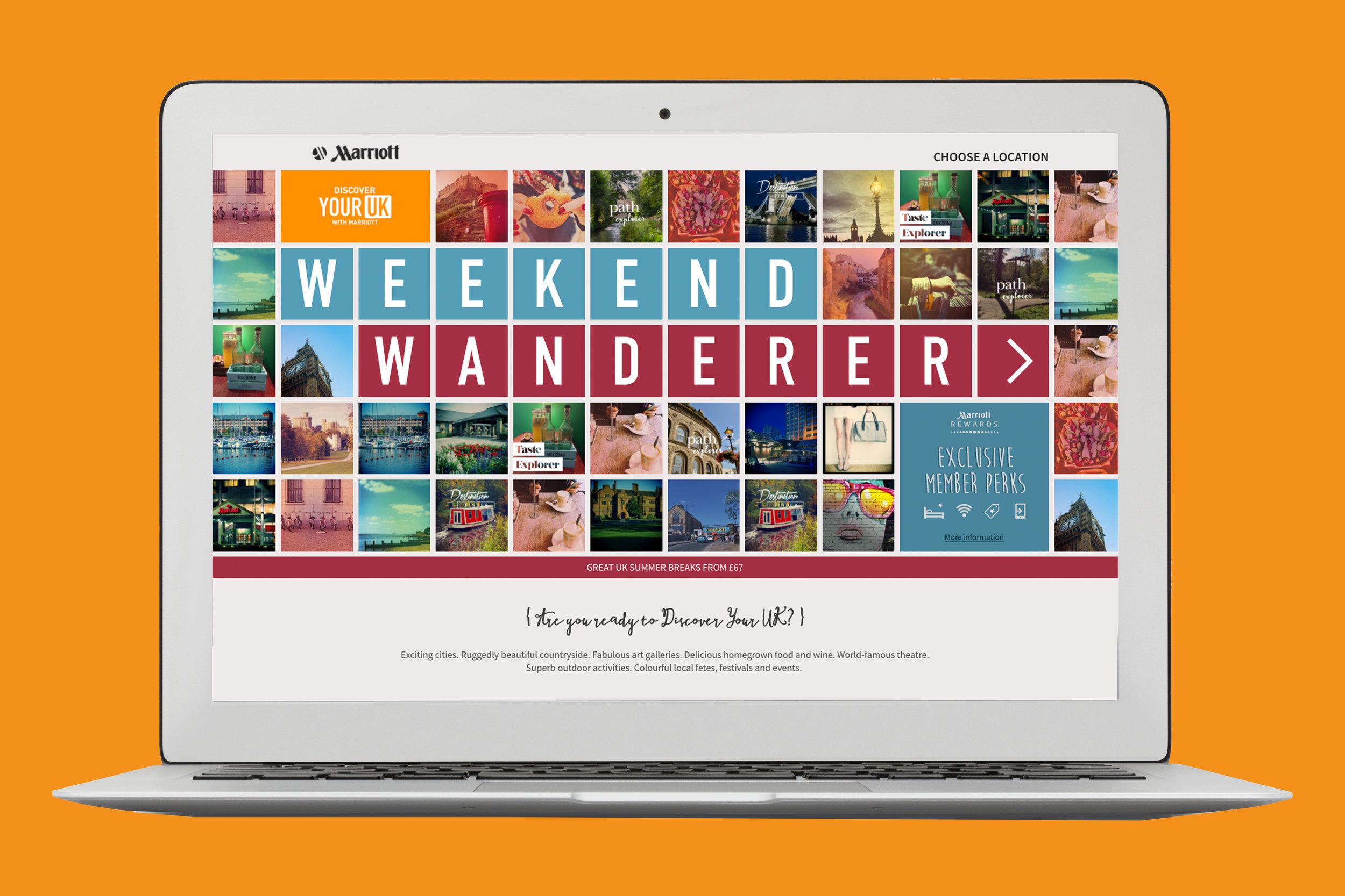 Cactus Design Weekend project branding Digital Screen Mac Windows
