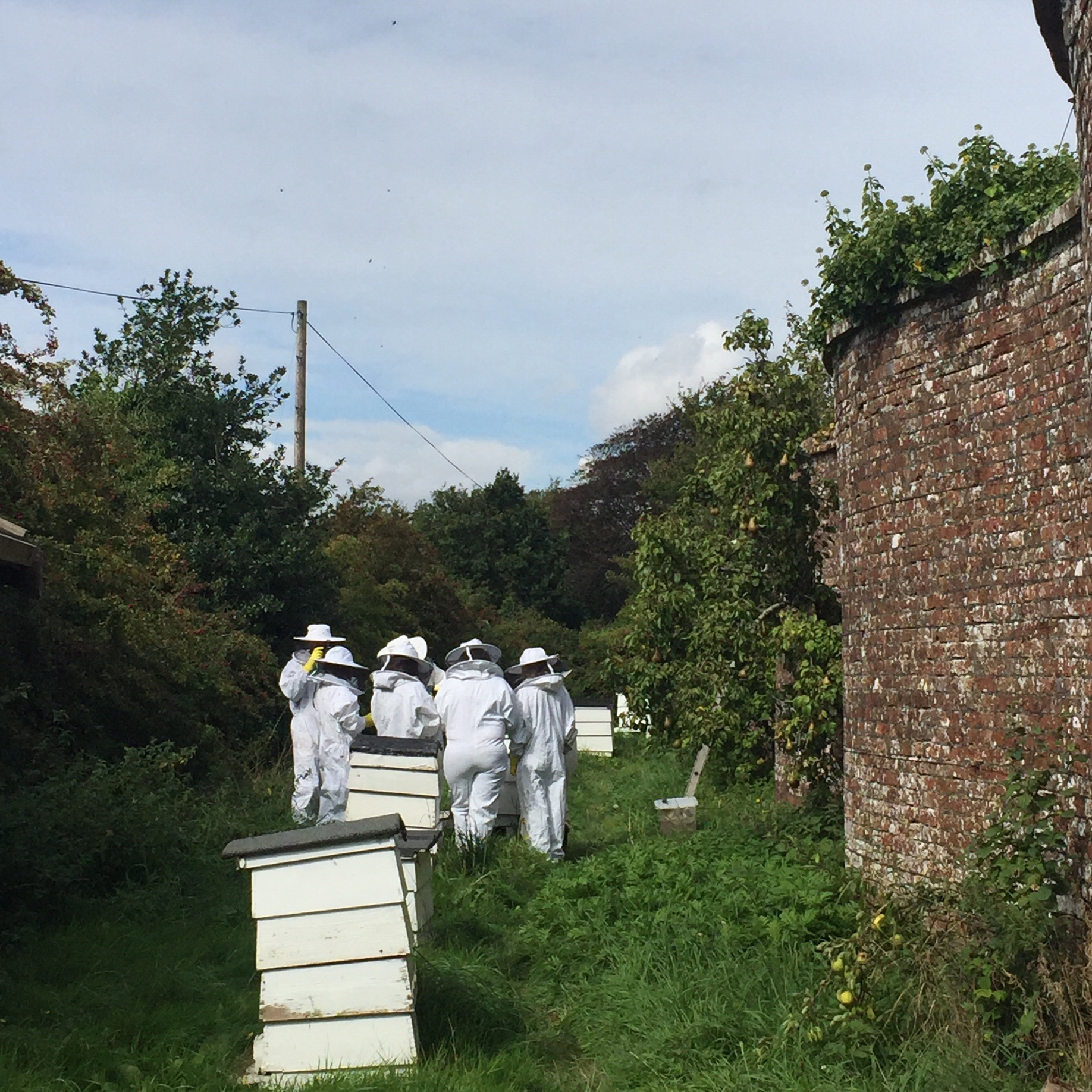 Honey-and-Harvest-Deans-Court