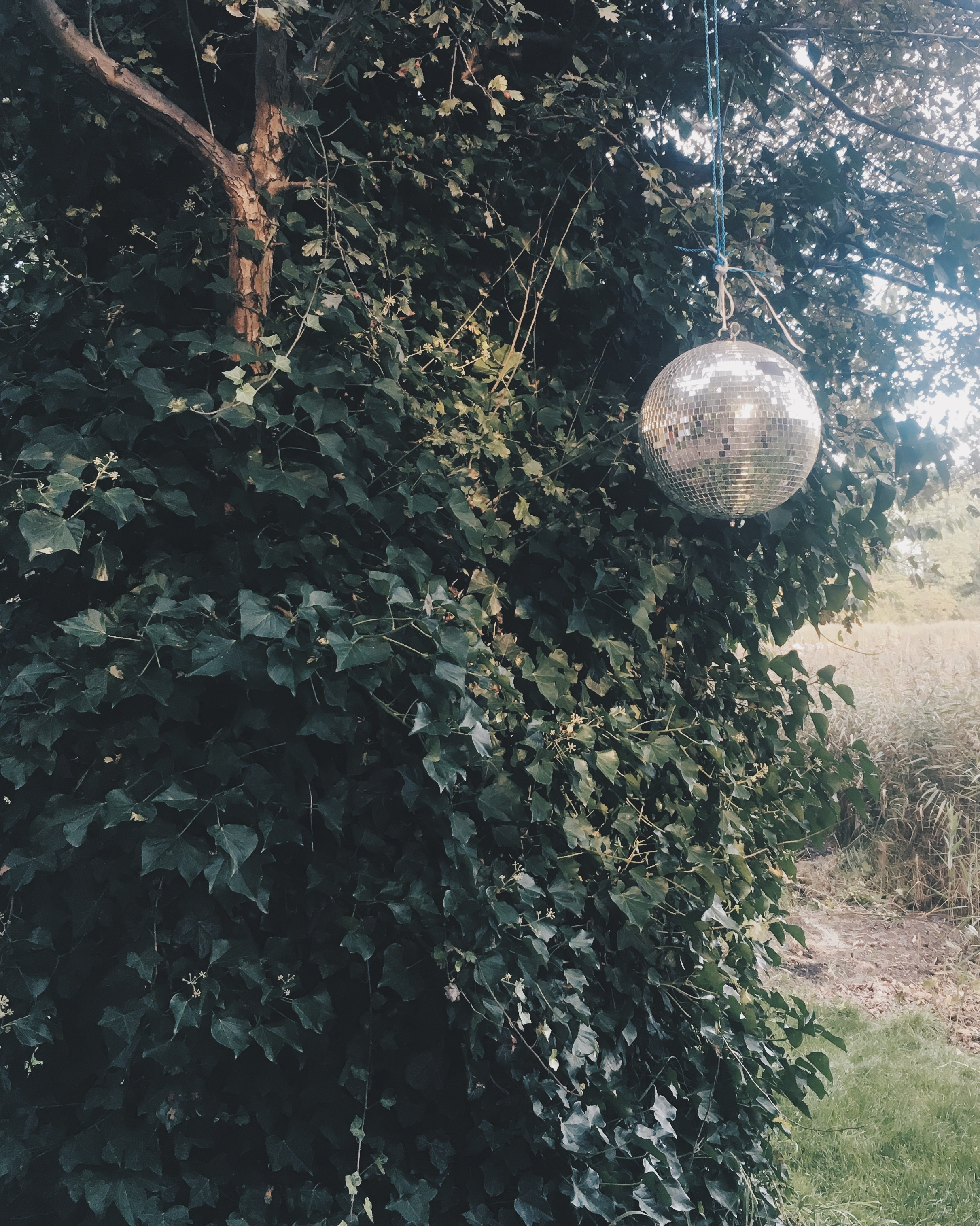 A Wildflowers Home / Christiania discoball