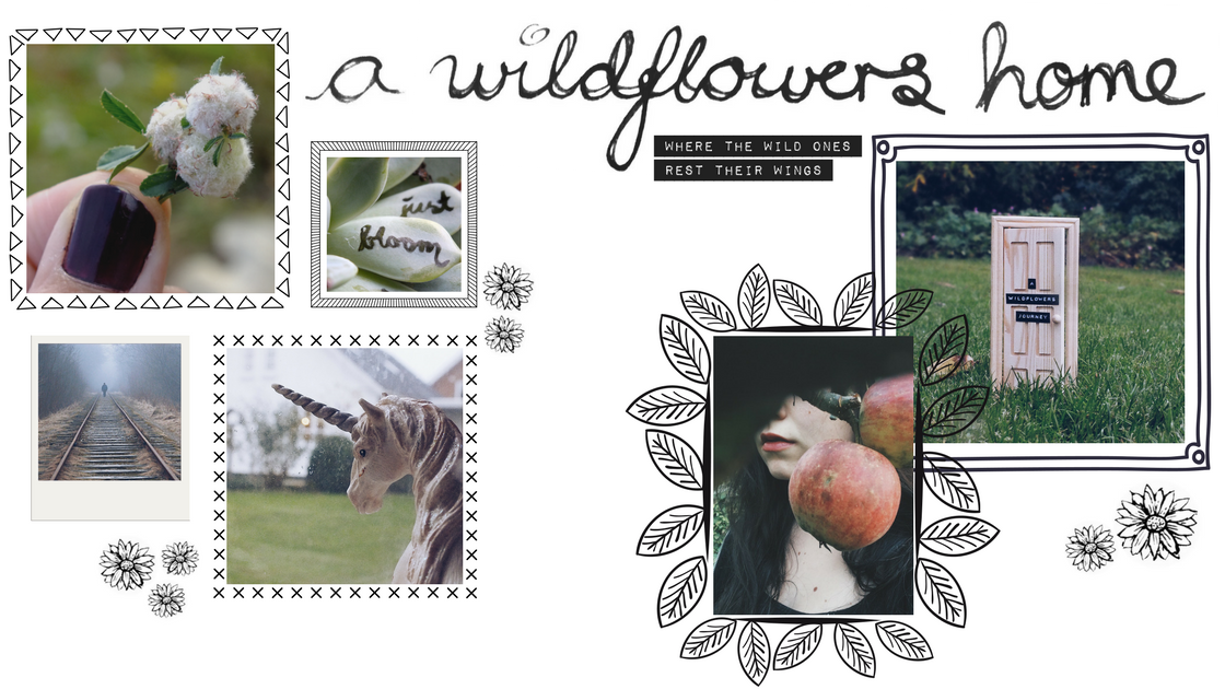 A Wildflowers Home // front page // where the wild ones rest their wings