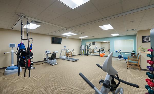Neenan - Gym 2.jpg