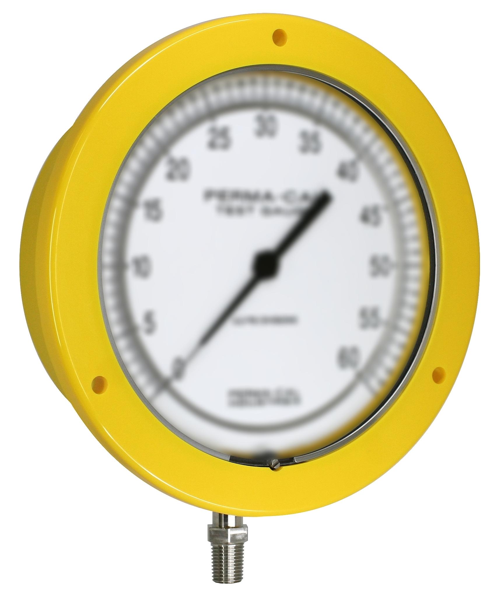 6_ff_yellow_angle_blank.jpg