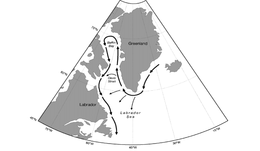 Map-of-the-Greenland-and-Labrador-area-with-arrows-showing-the-direction-of-ocean.png