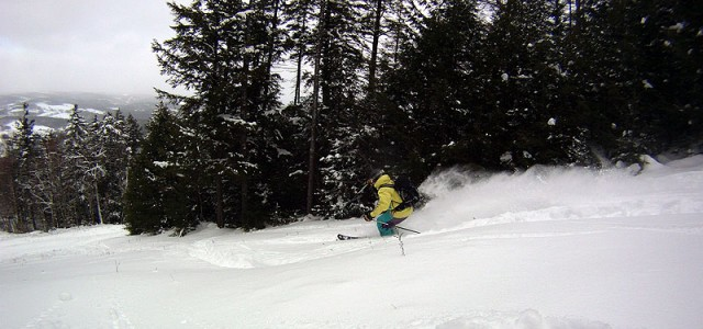 Out of Bounds: Ascutney, Vt   .