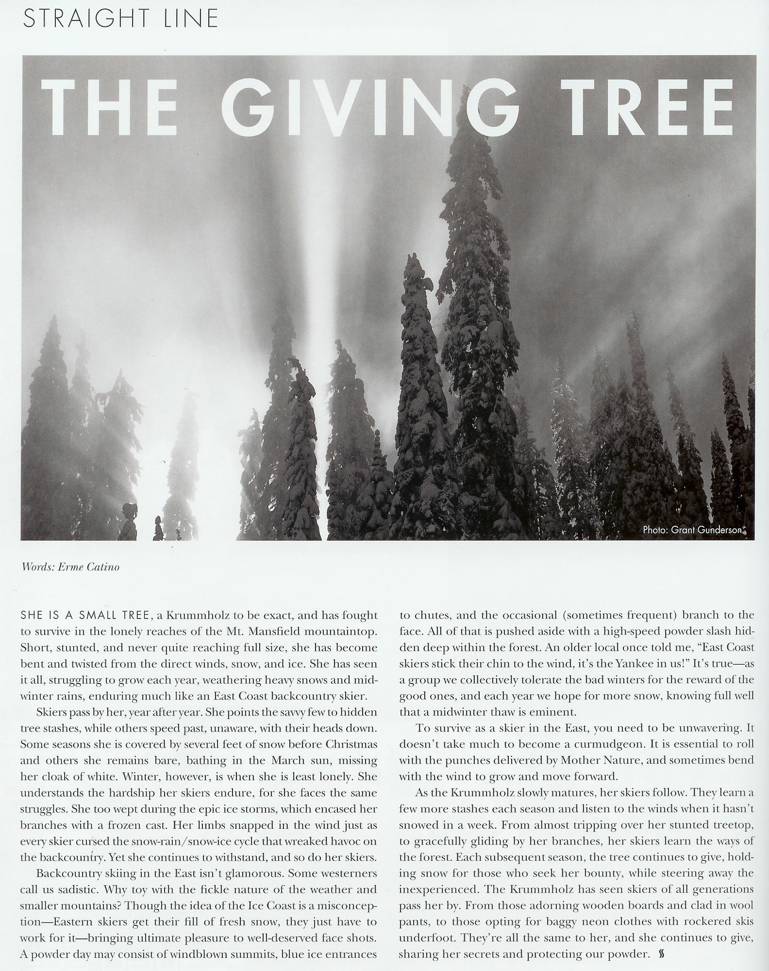 erme-givingtree.jpg