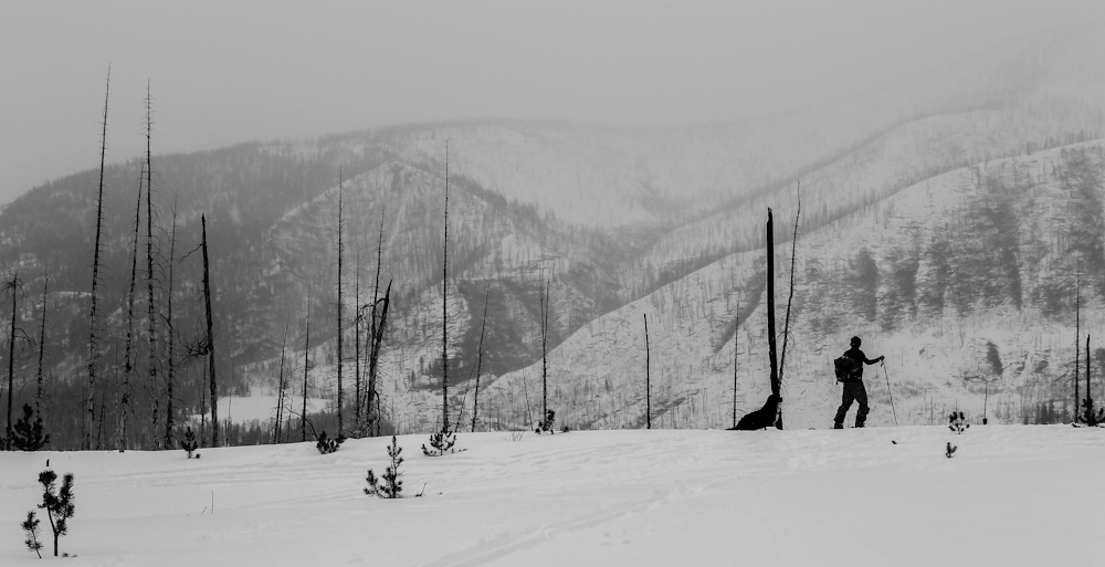 Beyond Boundary: Backcountry Yurt Skiing in Utah's High Uintas .