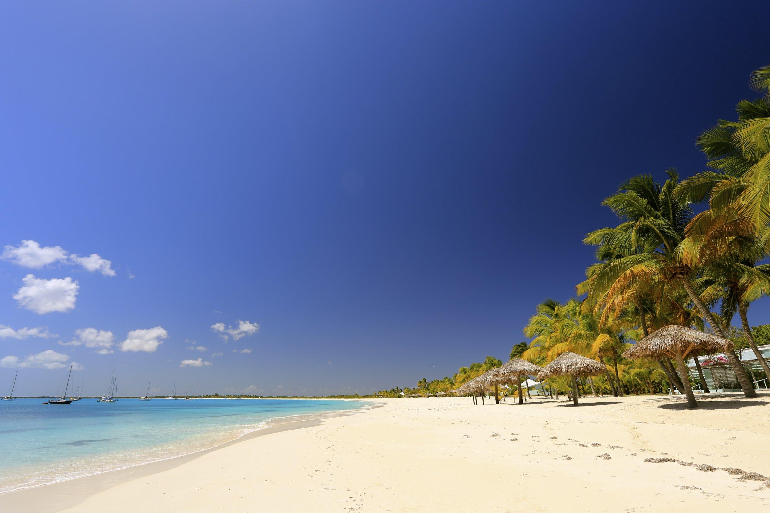 Beach Barbuda copy.jpg