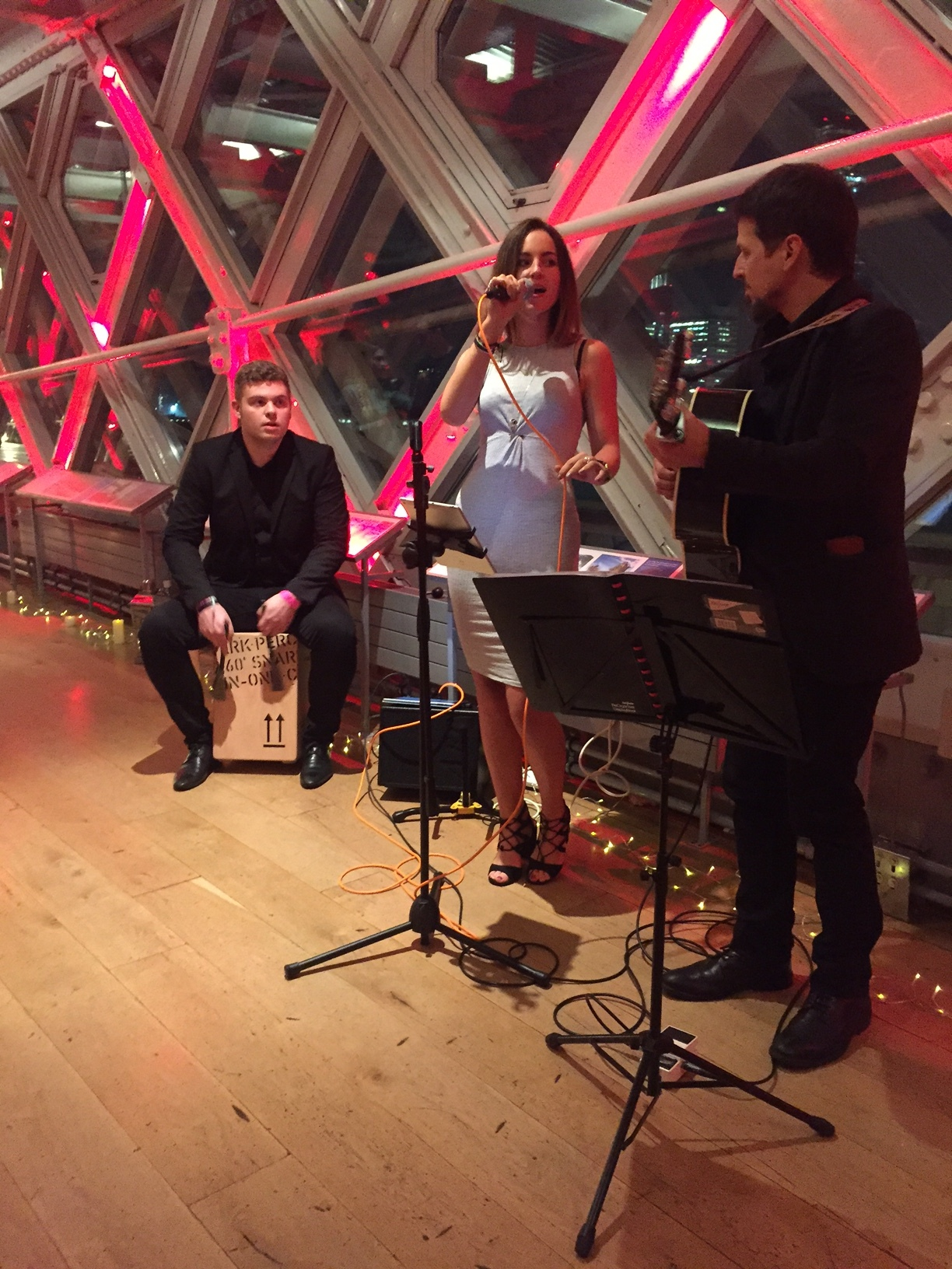 acoustic trio engagement party.JPG