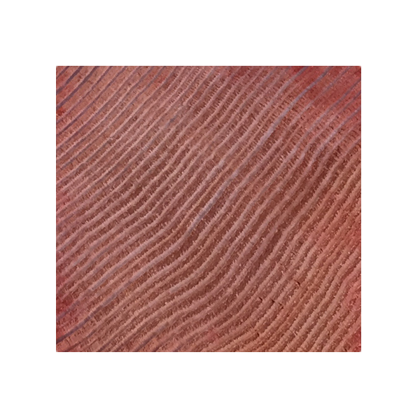 Klear Gard | 25™ - Penetration Image (Note: Wood Product is coverage dye added to show full Penetration of Klear Gard |25)