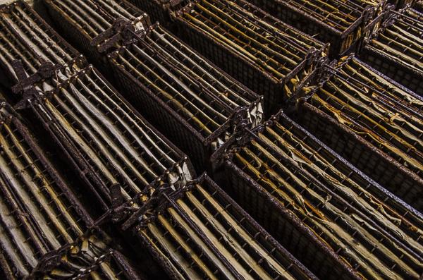 2013_Orford Ness overnighter-07393.jpg