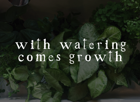withwateringcomesgrowth.png