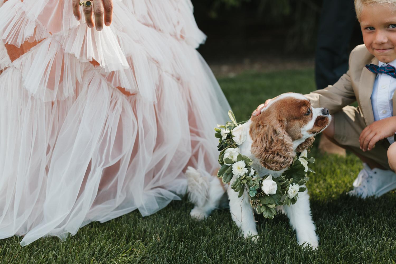 Bloomfield Hills Michigan Wedding Photographer Mae Stier-062.jpg