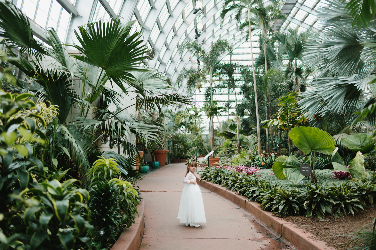 Chicago Garfield Park Conservatory Wedding by Northern Michigan Photographer Mae Stier-042.jpg