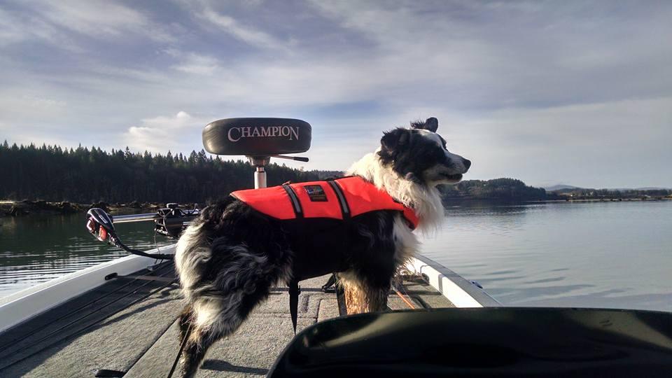 Kenai on the boat