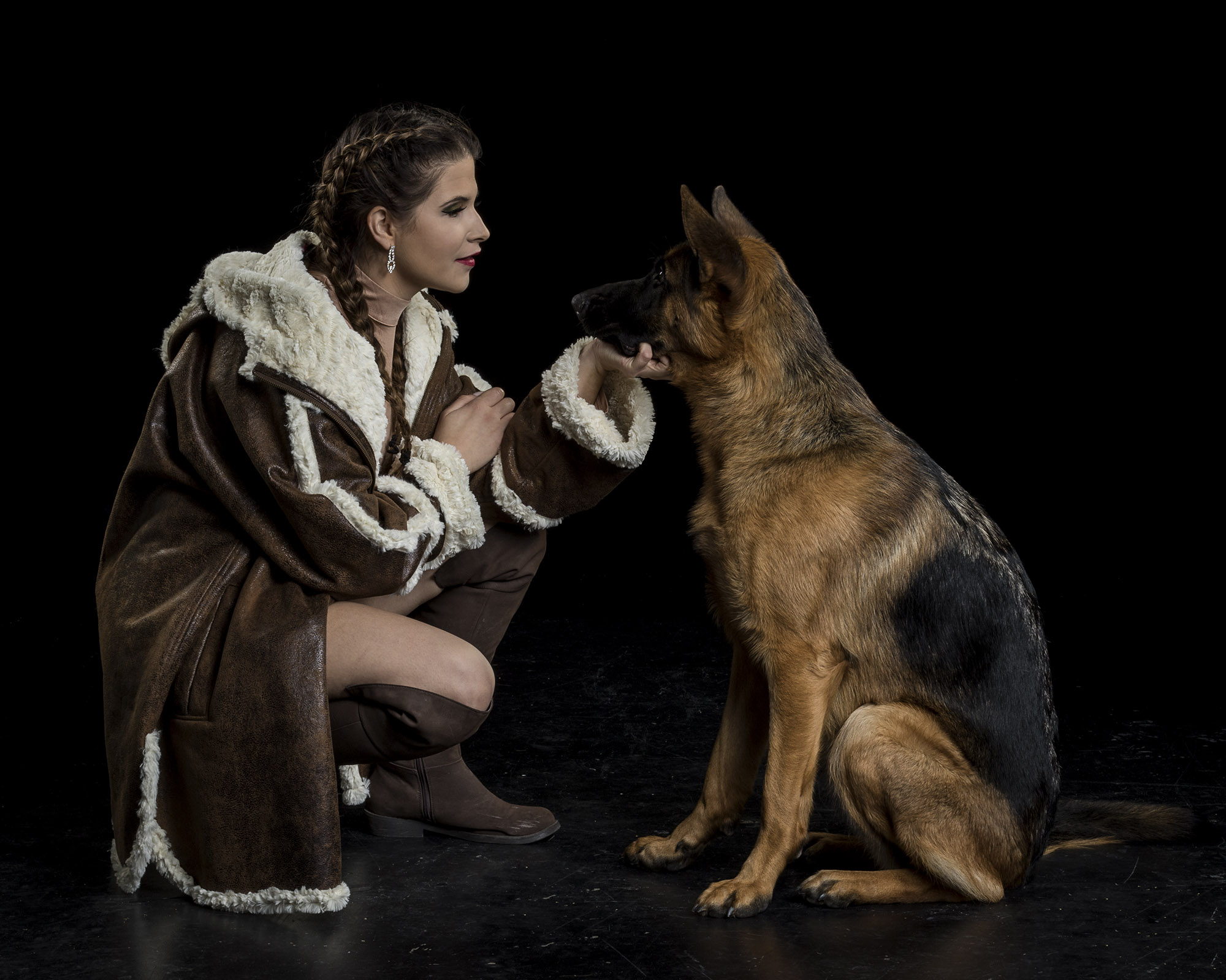german shepherd dog - pet photography - london ontario