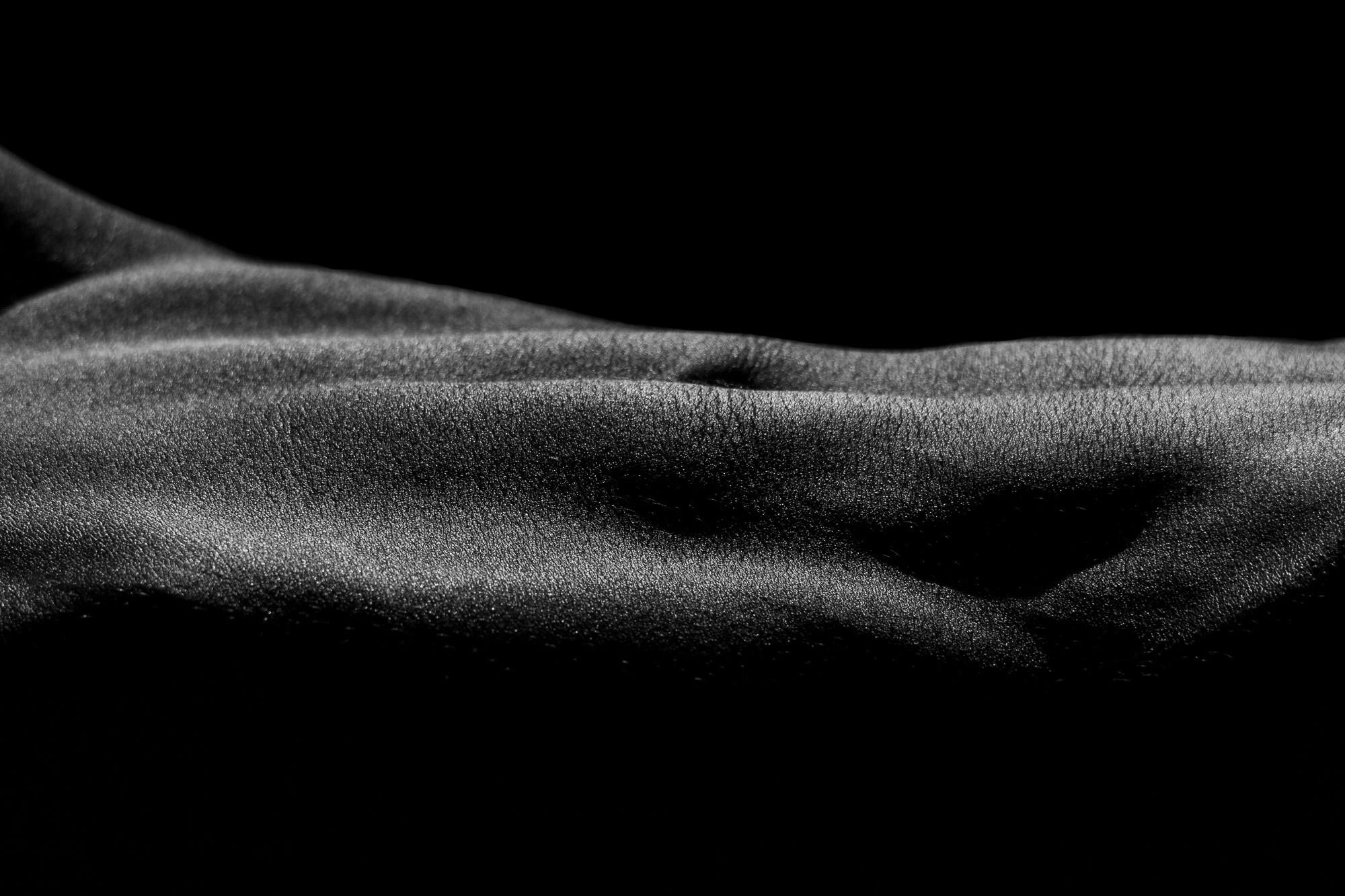 Abdominal bodyscape