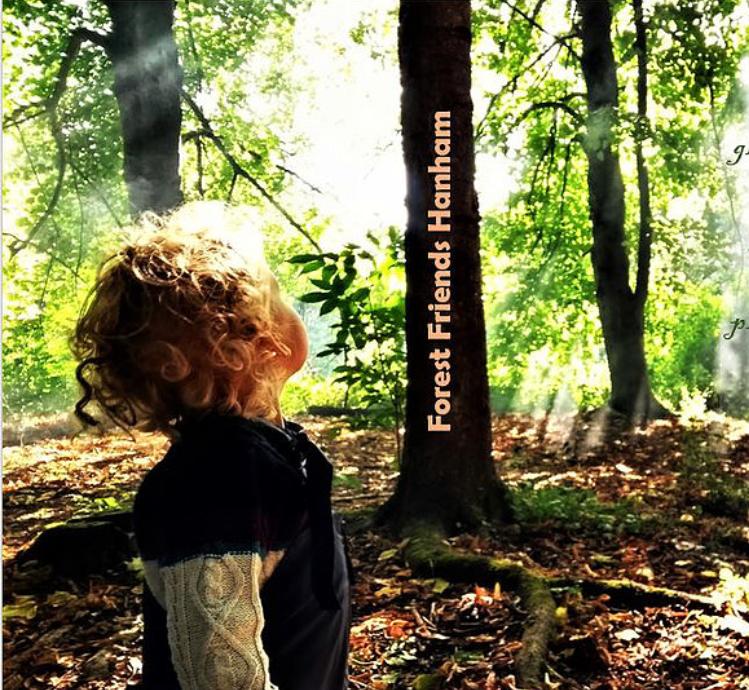 Forest Friends, Hanham
