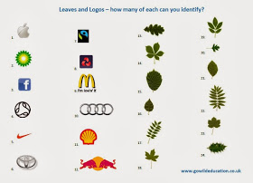 go wild forest school Leaves and logos
